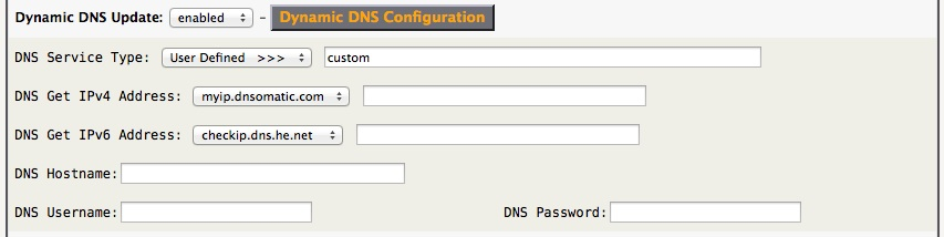 Dynamic DNS Custom Config