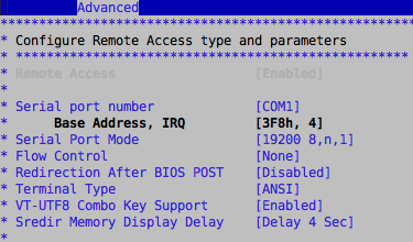 Remote Access BIOS